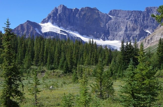 """Heading west in the direction of Skoki Lodge over Jones Pass"" Hiking Trail Banff"
