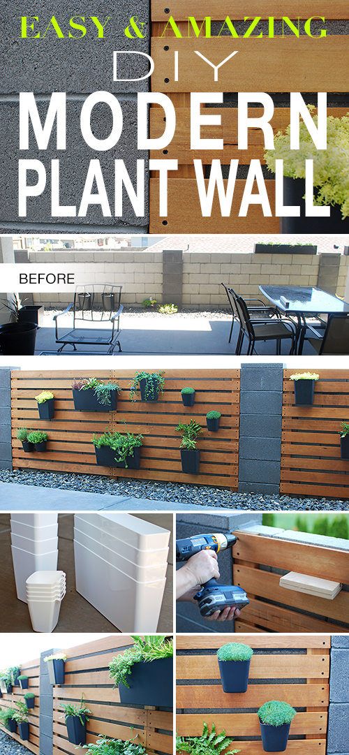 Photo of Easy & Amazing Modern DIY Living Plant Wall | The Garden Glove