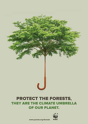 Deforestation And Forest Degradation Are Responsible For About 20 Of Global Emissions C Jose L Climate Change Poster Climate Change Art Environmental Posters