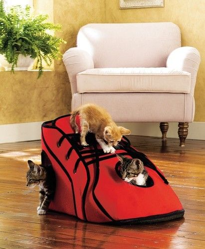 Gym Shoe Cat Activity Playhouse Home Decor- how cool is this!!!