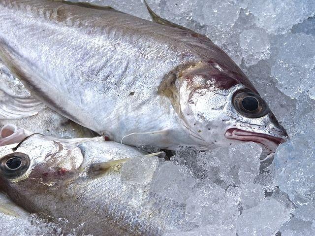 ¿Alguna vez has abierto la nevera y te has encontrado con un fuerte olor a pescado? Hemos descubierto cómo acabar con ello.