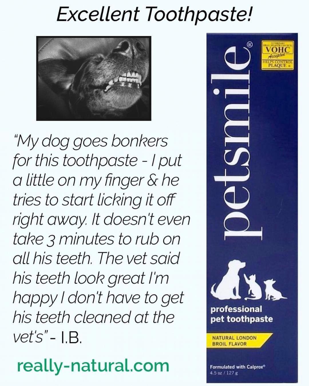 Uncovered Oral Care Ideas Toothlesssmile Oralcareseasalt