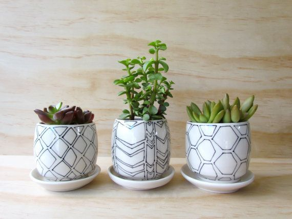 Tiny planters perfect for small succulents, herbs, ... - READY TO SHIP! Tiny Planters Perfect For Small Succulents, Herbs