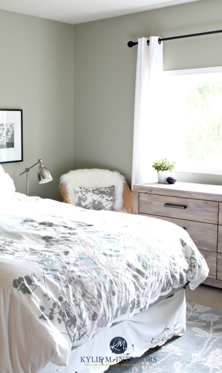 The 7 Best Benjamin Moore Green Paint Colours Small