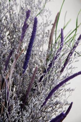 Caspia Bouquet Lavender Natural Preserved
