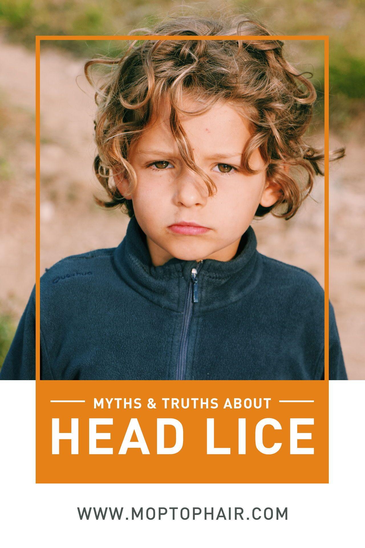 Park Art|My WordPress Blog_What Do Head Lice Look Like In Blonde Hair
