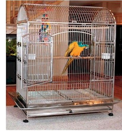 stainless steel bird cages,baby parrots,handfed parrot ...