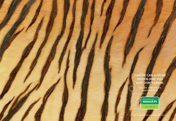 Central Nacional Unimed: Tiger O vísivel se torna visível por negligência!