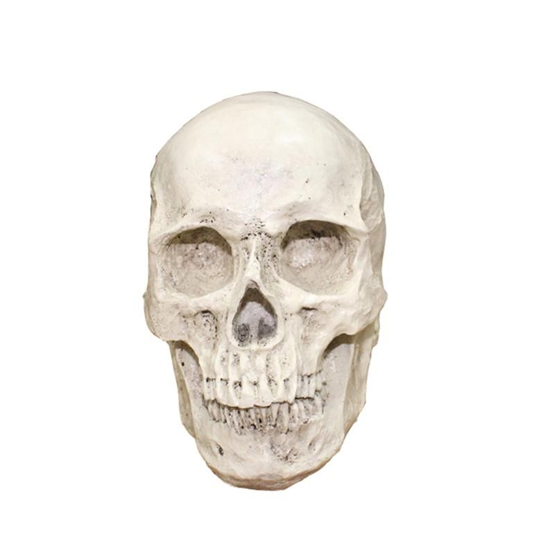 Resin Skull Realistic Human Skull Gothic Halloween Decoration - halloween fish tank decorations