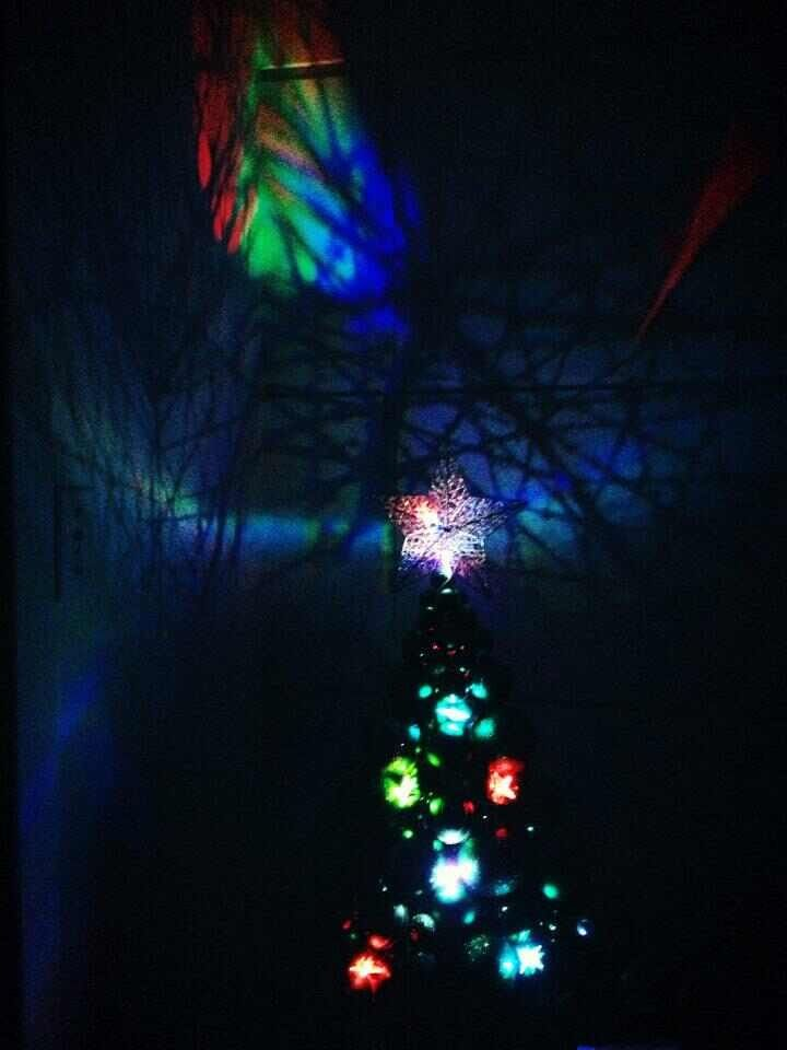 The Xmas tree at night :)
