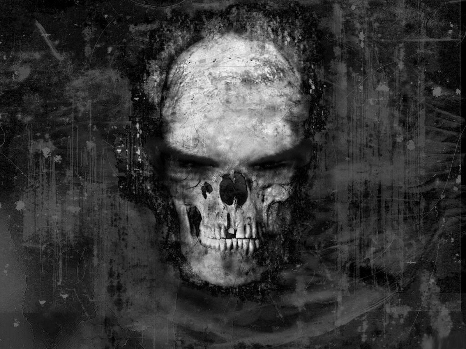 Cool skull hd cool skull wallpapers cool skull wallpapers hd cool skull hd cool skull wallpapers cool skull wallpapers hd nice skull voltagebd Gallery