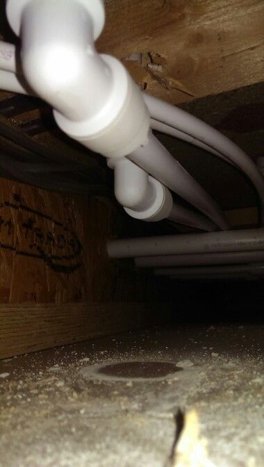 Having Drilled Several Holes In A Ceiling To Locate The Source Of