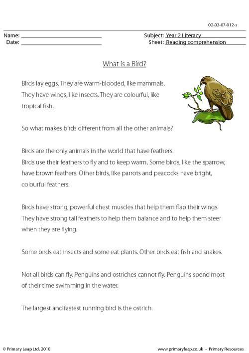 This worksheet includes interesting facts about birds. Students read ...