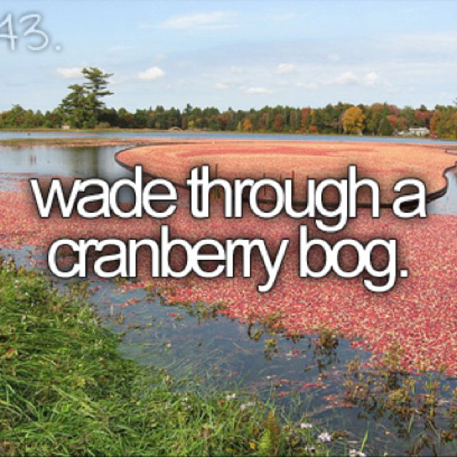 Like ocean spray commercials! I'm pretty sure this is literally on Gabi's bucket list...