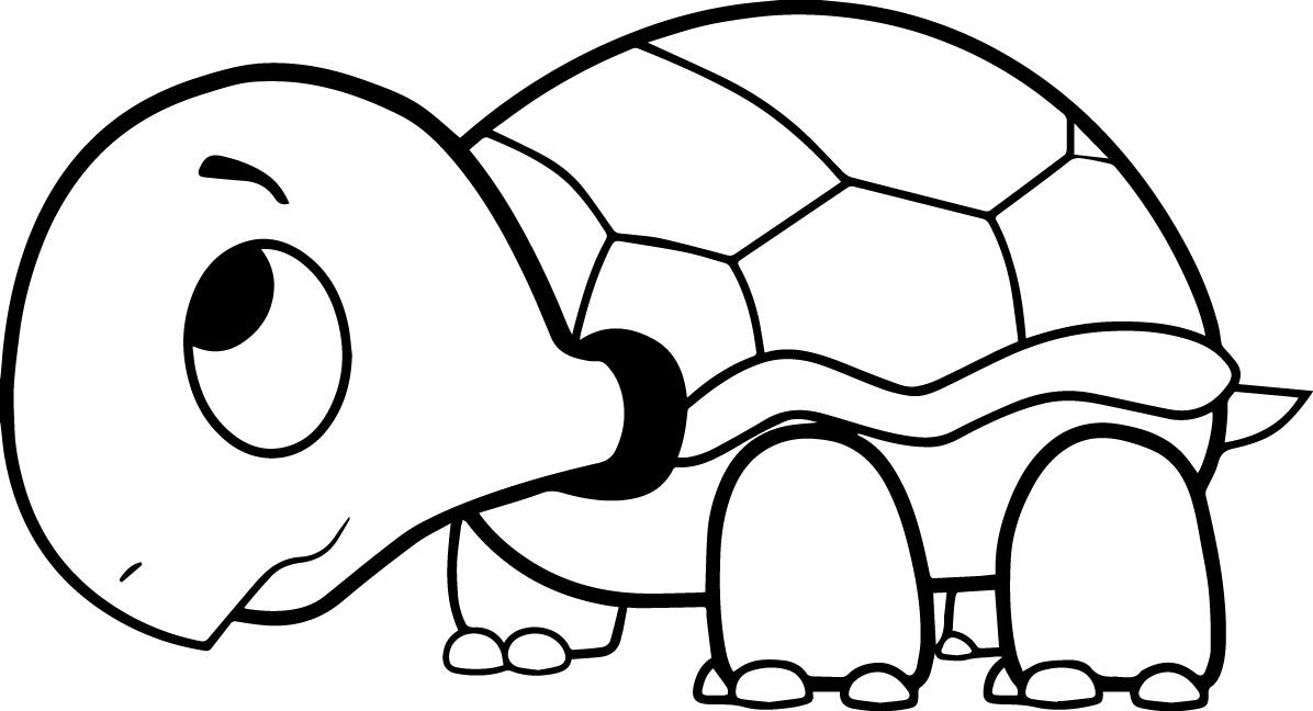 Simple Turtle Coloring Pages Ideas For Kids Animal Coloring