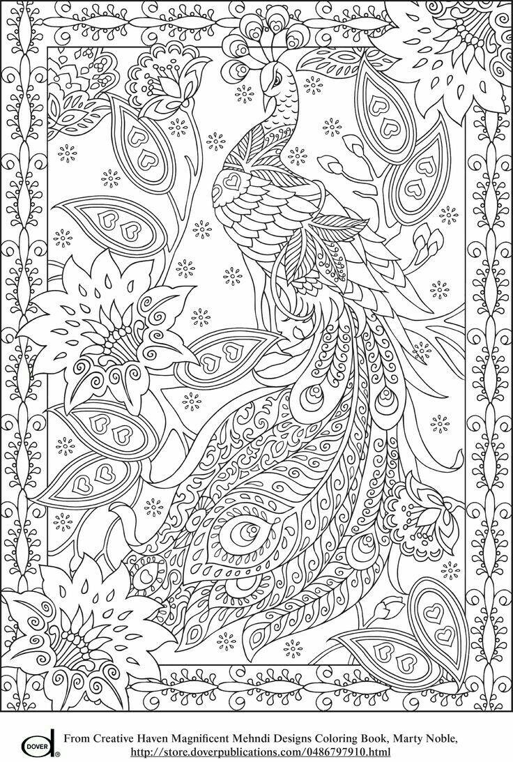 Pin de Juana Cortez en Big Kids Coloring | Pinterest | Pájaro y Dibujo