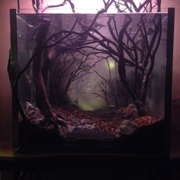 Dark And Eerie Fish Tank Fish Tank Themes Fish Tank Decorations Amazing Aquariums