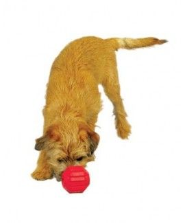 Kong Stuff A Ball M For Dogs Dogs Best Dog Toys Dog Toys