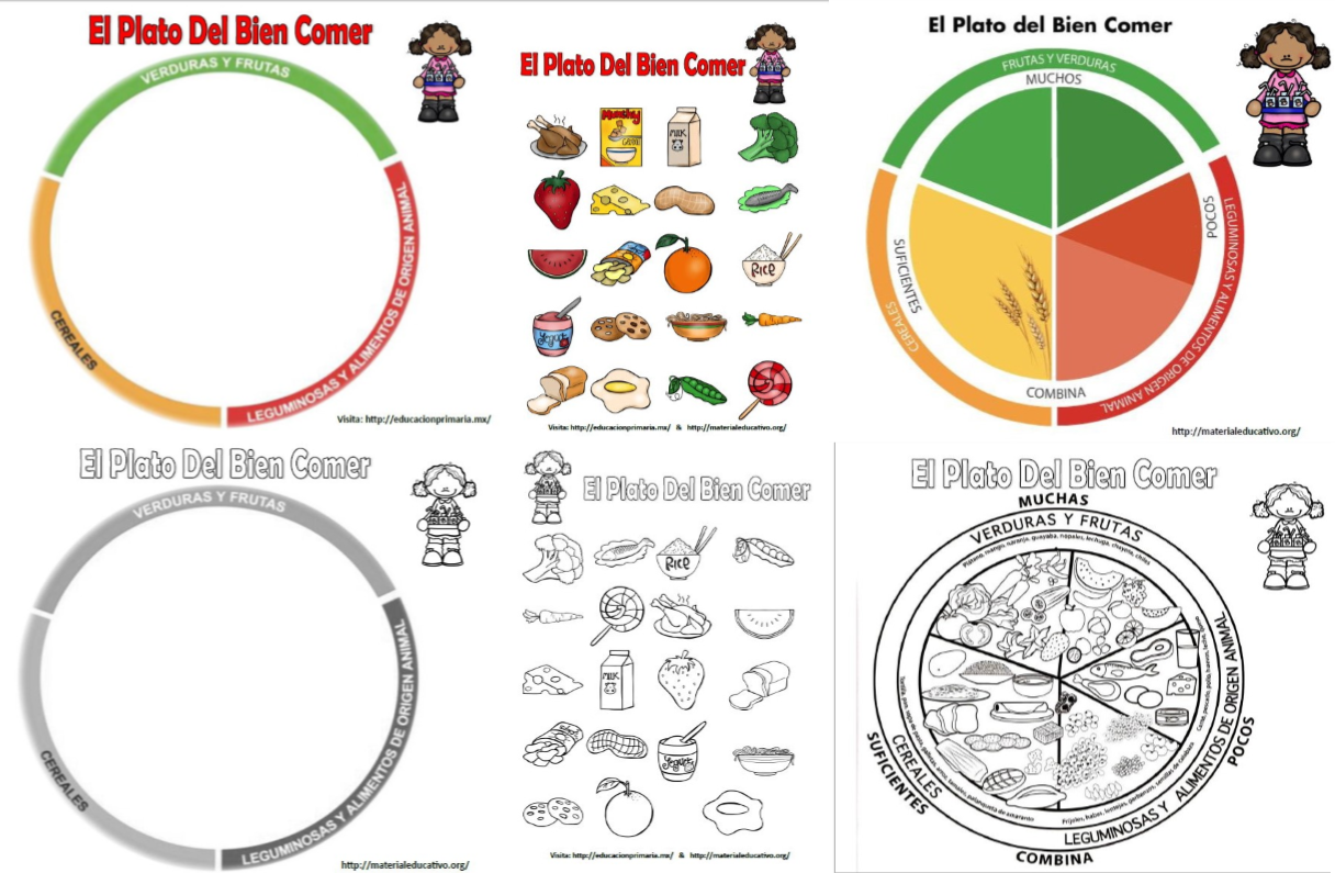 Como parte de los contenidos de educación básica para el segundo y tercer  ciclo de primaria,… | Plato del bien comer, Plato del buen comer,  Actividades de nutrición