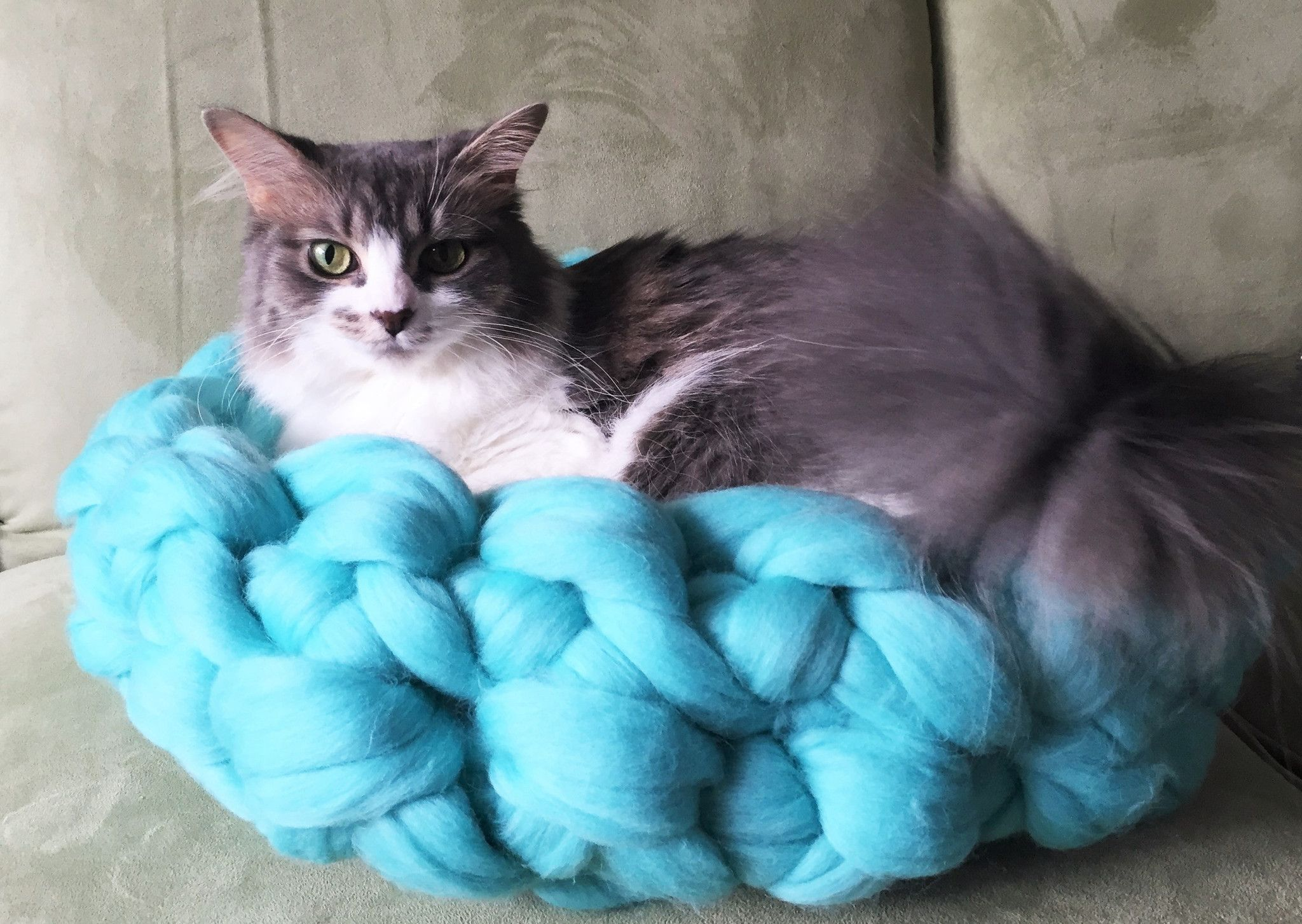 Chunky Merino Wool Cat Bed Wool cat, Cat bed, Dog beds
