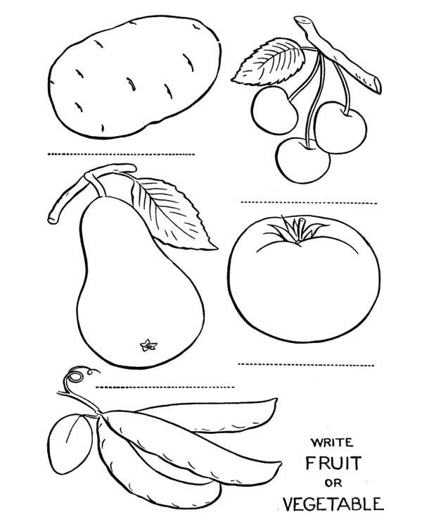 Fruits And Vegetables Name The Coloring Page