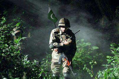 pin by rai mohsin bhatti on mohsin sheraz pinterest pakistan