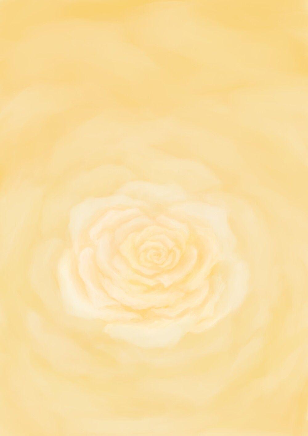 خلفية صفراء وردة الجوري Art Stuff To Buy