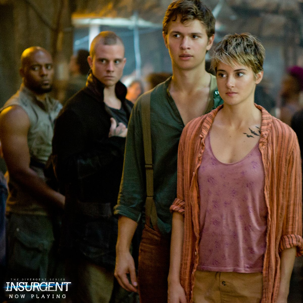 Is joining forces the right answer? #Insurgent