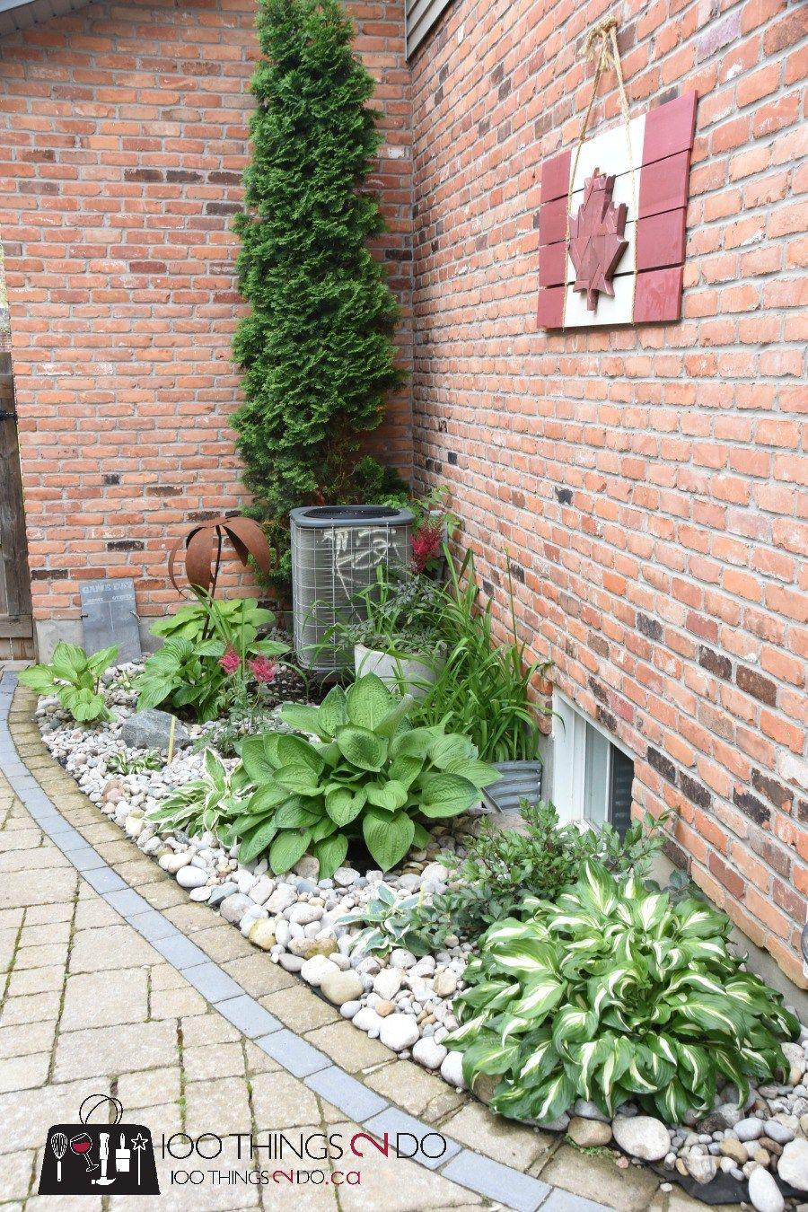 hosta garden gardens