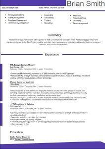 New Resume Format    Resume Formats    Resume