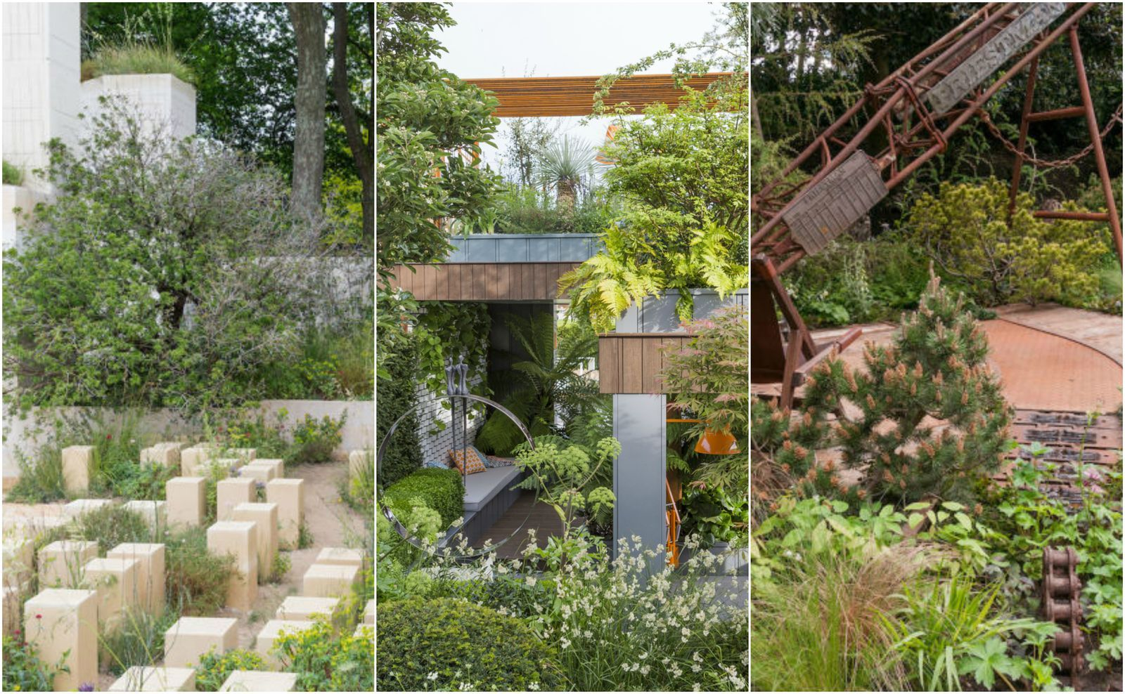 RHS Chelsea Flower Show special award winners announced