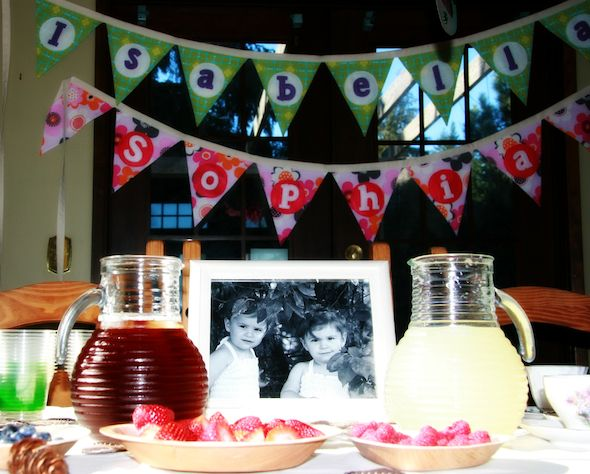 love the easy party themes from Green Planet Parties
