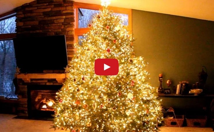 Looks Like A Normal Christmas Tree - But Watch What Happens When