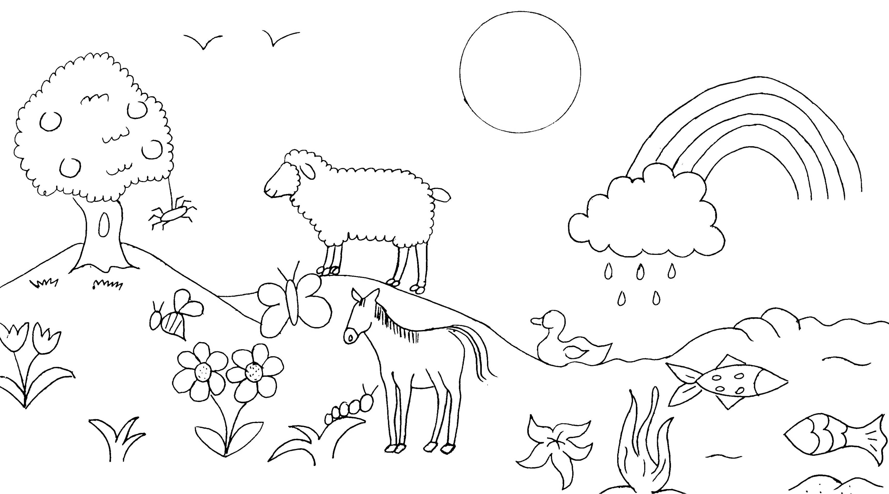 Coloring Pages About Allah S Creations For Prek Google Search