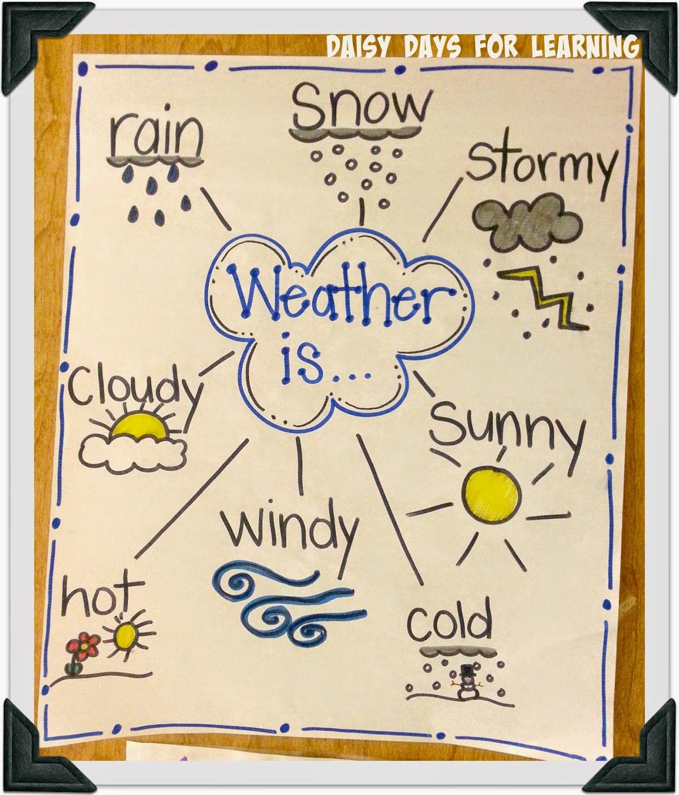 Polar Bears And Weather