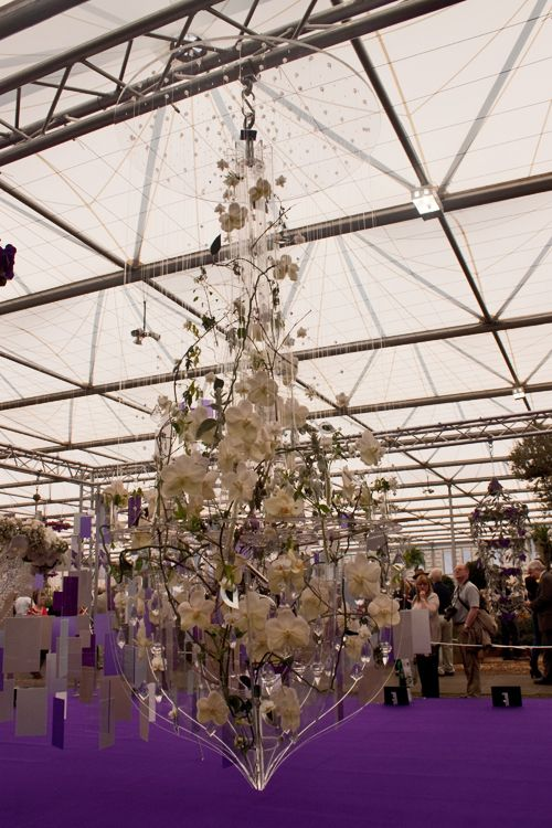 The winner of the rhs chelsea young florist of the year competition the winner of the rhs chelsea young florist of the year competition for the fourth year running was joseph massie of springbank flowers in manchester mightylinksfo