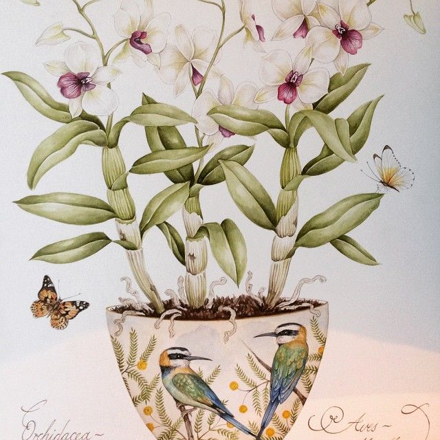 Dendrobium orchid with Bee Eaters original painting by Kelly Higgs. #kellyhiggs #kellyhiggsbotanicalart #orchidpainting #flowerpainting #orchidpainting #beeeater #butterflies