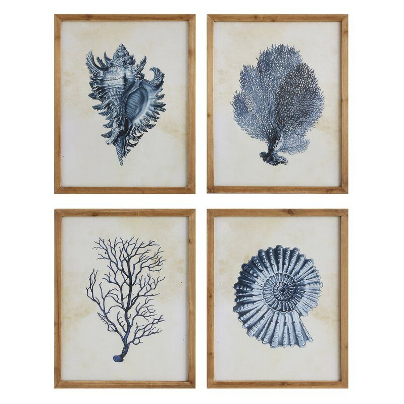 Haubert blue shells coral 4 piece picture frame print
