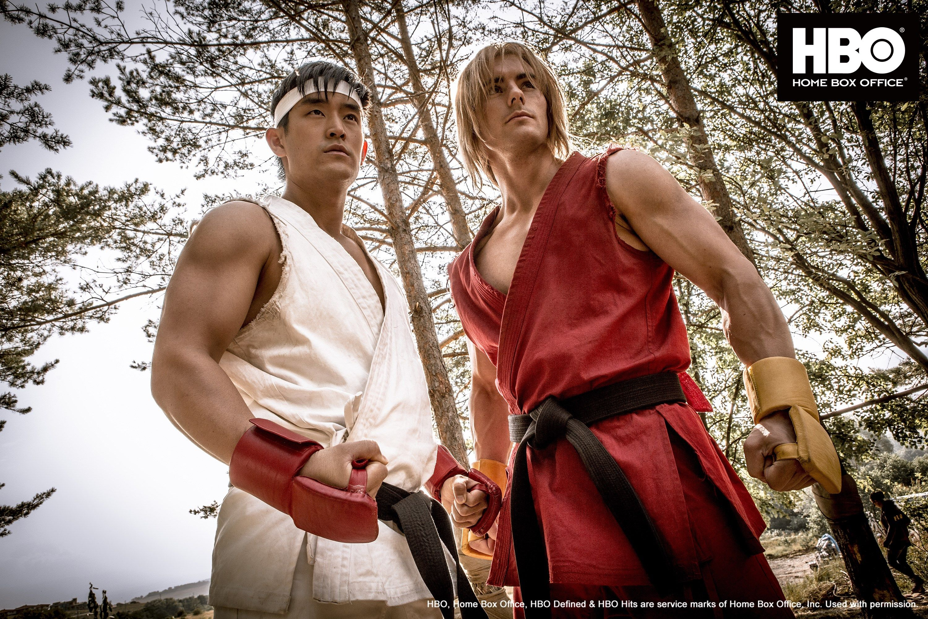 Street Fighter Assassin S Fist Is A Live Action Web Series Tv Series And Feature Film In The Martial Street Fighter Street Fighter Costumes World Of Warriors