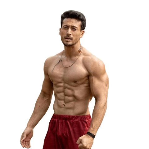 Bollywood Actor Png Download 2020 Your Png Png Images Background Stock Png Tiger Shroff Bollywood Actors