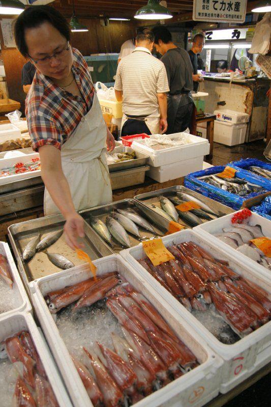 Tsukiji market known in english as the tokyo metropolitan for Wholesale fish market