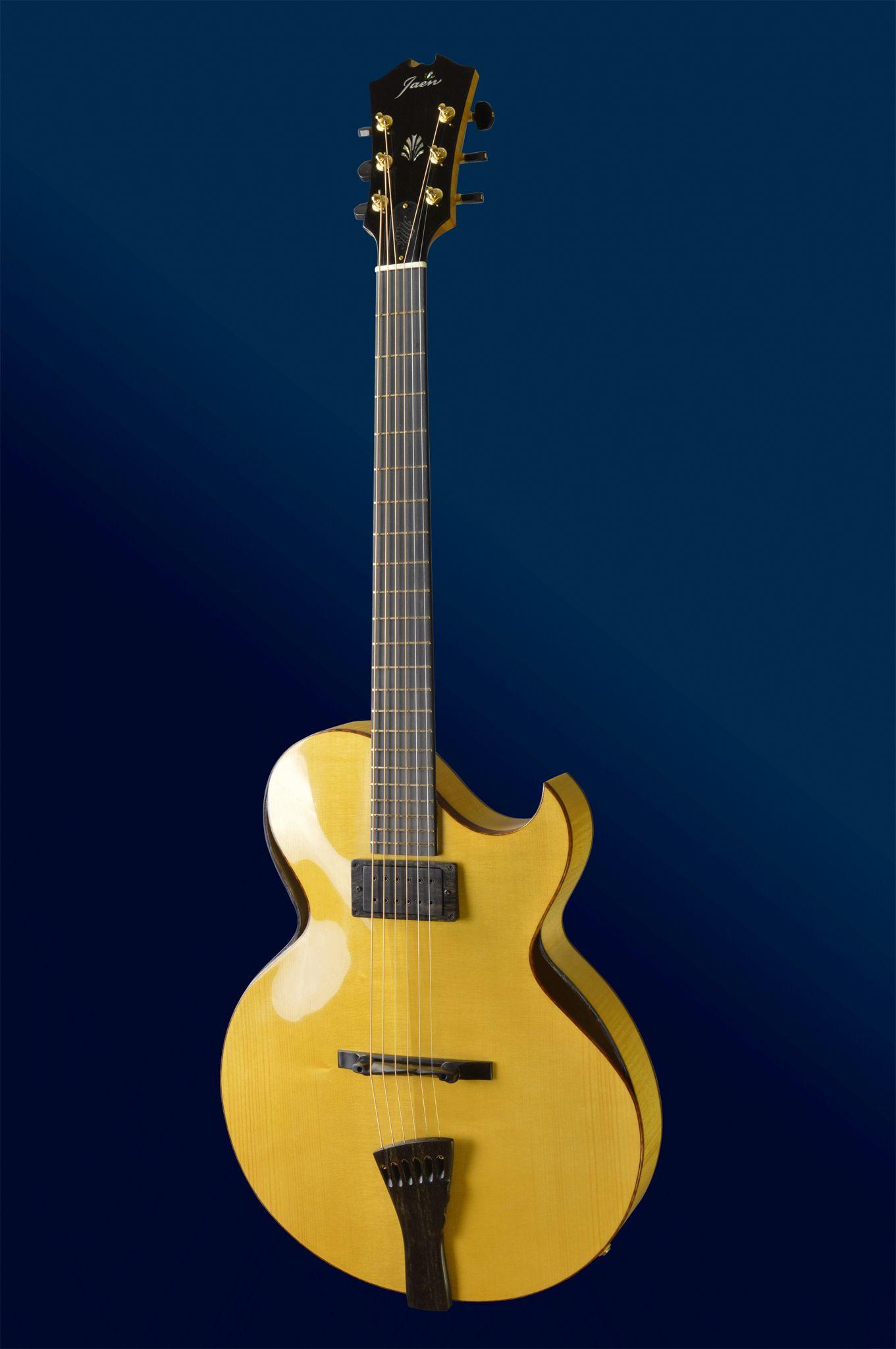 Benedetto Guitars Beautiful Guitars Guitar Jazz Guitar
