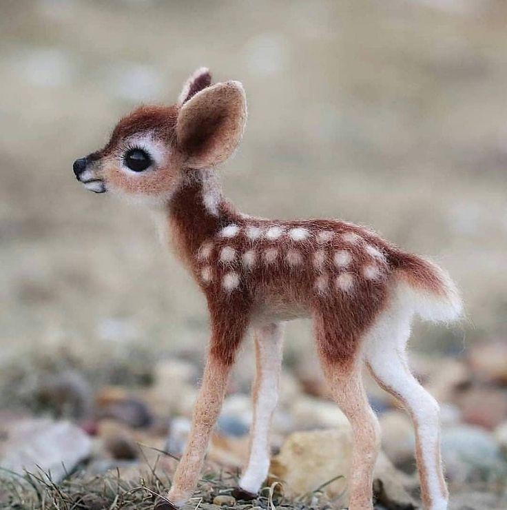 Bambi Bambi Rehkitz Tier S Hirsch Bambi Hirsch Rehkitz S Tier Susse Tiere Tierbabys Susse Tiere Bilder