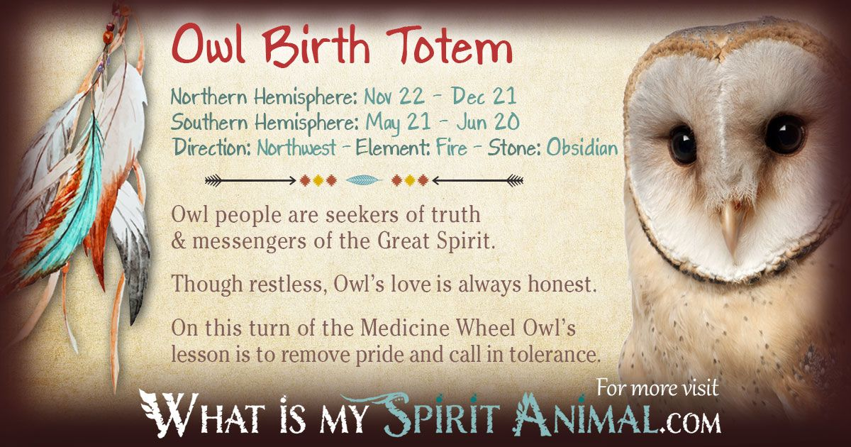 10+ Owl spirit animal meaning ideas