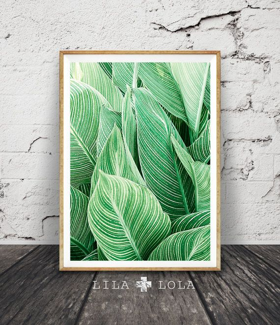 Tropical Plant Wall Art, Leaf Print, Printable Digital Download, Large  Poster, Tropical Wall Decor, Plant Leaf Printable, Leaf Wall Decor
