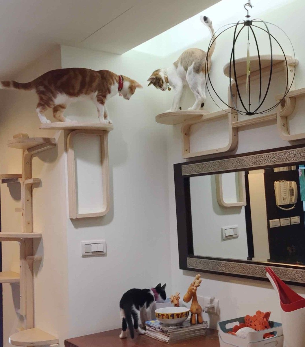 Amazing Cat Tree Made Entirely From Frosta Stools Ikea