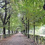 Caminhos #path