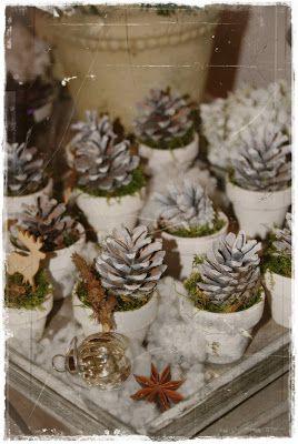 Station 88 b umchen pflanzen zapfen weihnachten basteln und wohnen und garten - Wohnen und garten weihnachten ...
