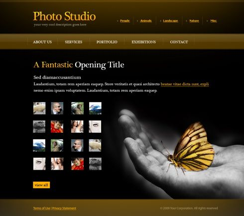 Photo Gallery Web Template 6072 Art Amp Photography