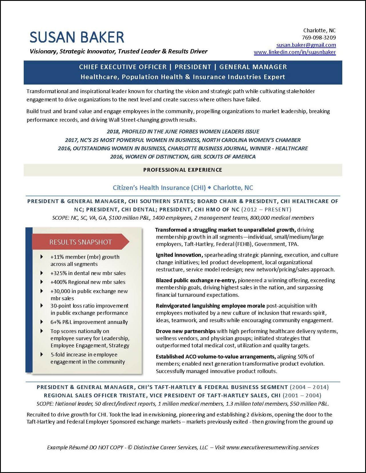 Example Ceo President Executive Resume Pg 1 The Professional